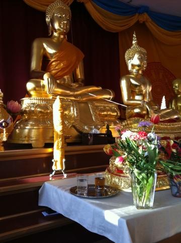 Offer till Buddha